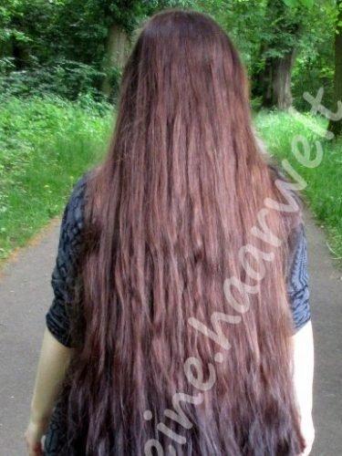 Lavinjas kleine Haarwelt-Quadrat